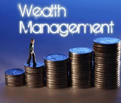 wealth management program